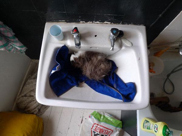 09 parmenides bath